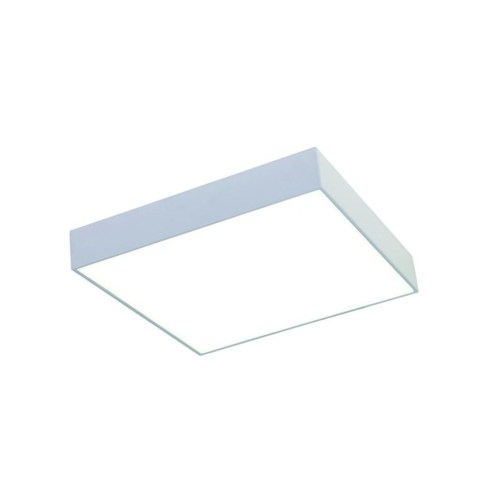 2066-30C Светодиодный настенно-потолочный светильник Favourite Flashled